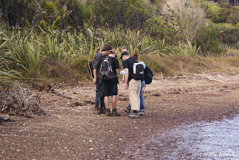 Groupe-carte-Waiheke-Island-PVT-Nouvelle-Zélande