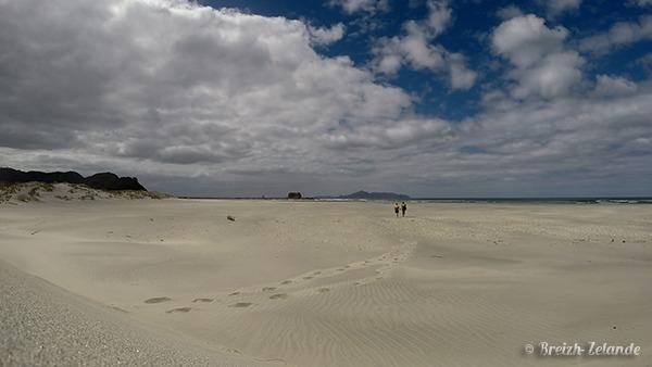 Mangawhai-dunes-ocean-pacifique