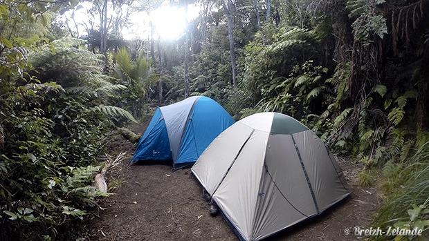 Camping dans Waitakere Range - Randonnée Nouvelle-Zélande