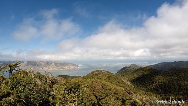 waitakere Ranges - randonnee Nouvelle-Zelande