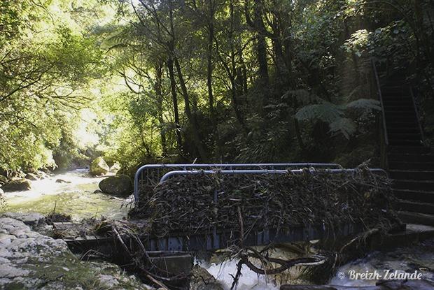 Kaiate-Falls- le pont
