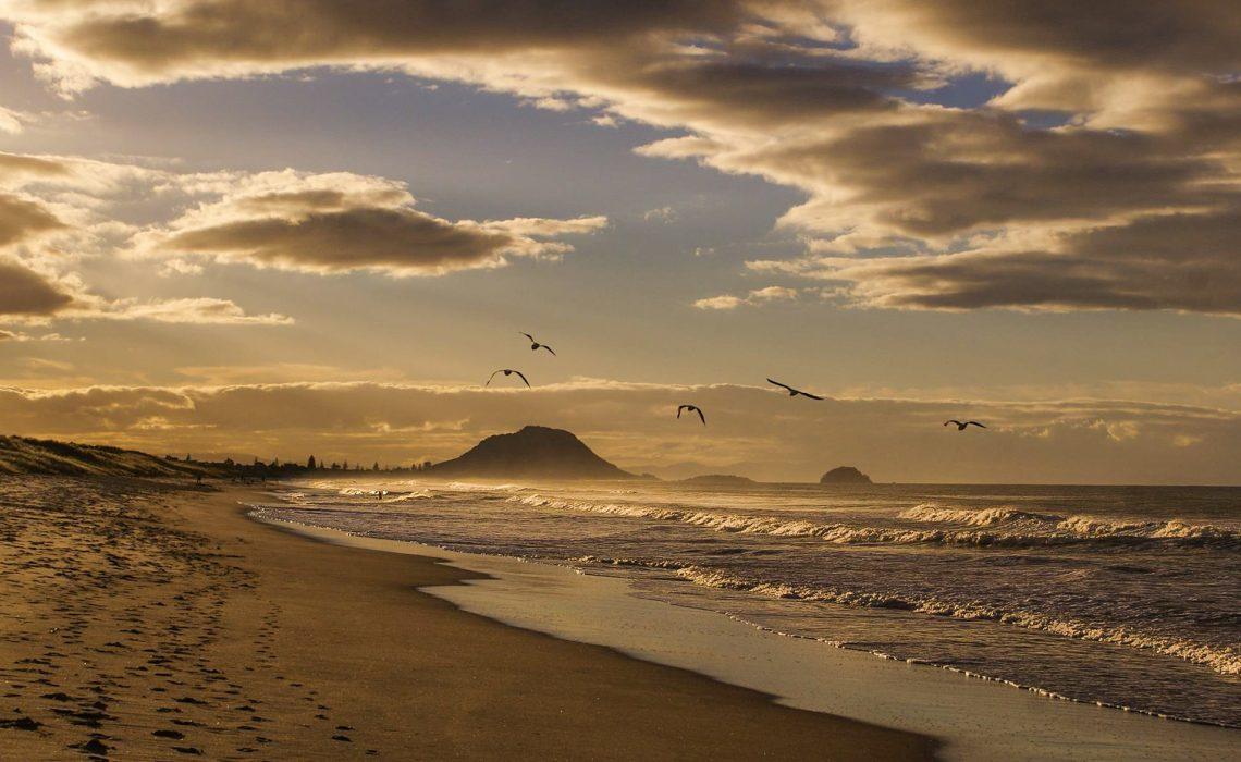 Mount Maunganui le repos du kiwi