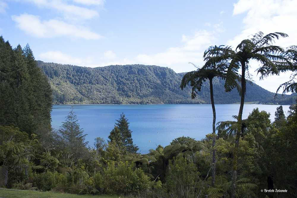 Tikitapu Lake ou Blue Lake