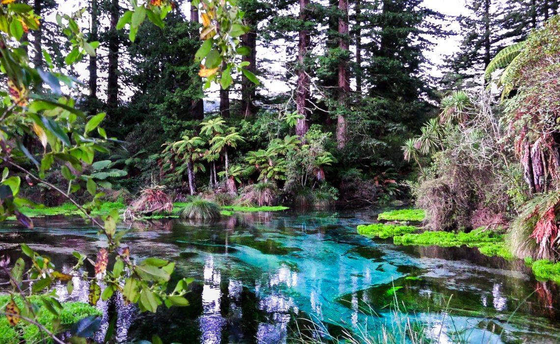 Une Rotorua