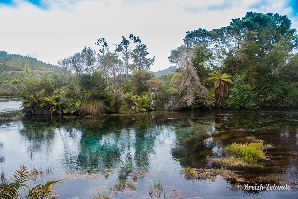 Takaka source maorie légende